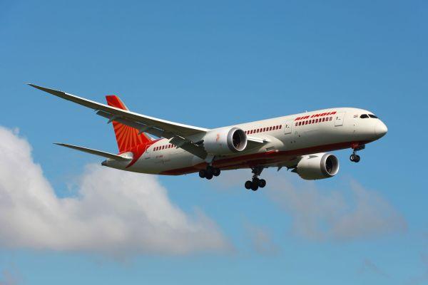 Une compagnie aérienne indienne ne propose qu'un menu végétarien en classe éco