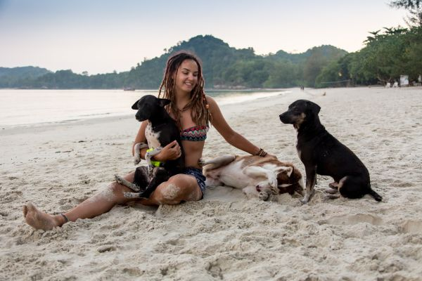 See The Caribbean Beach Filled With Puppies!