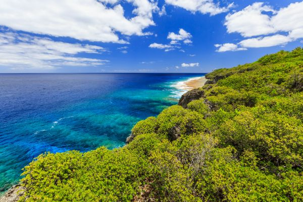 Discover the hidden wonders of the Niue