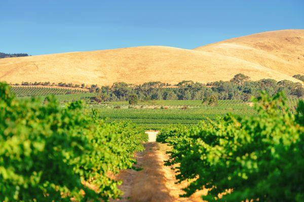 Découvrez des paysages du monde entier en restant en Australie