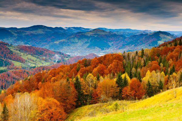 Durch den bunten Herbst wandern