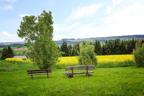 So wird Ihr Trip in das Saarland perfekt