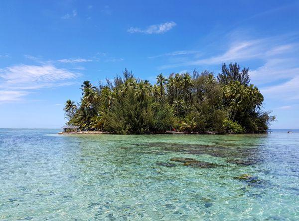 Insolite : louer son île en Polynésie