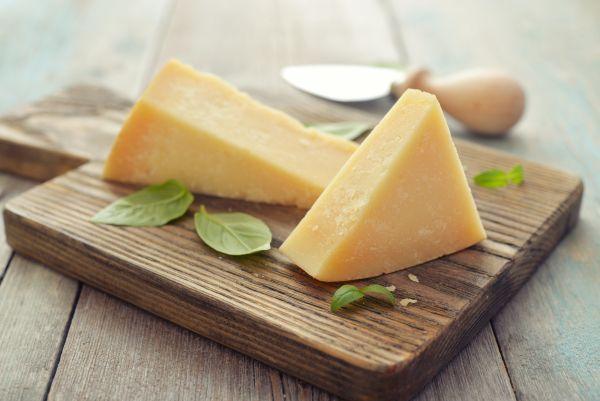 Animal welfare group exposes animal cruelty at Italian dairy farms