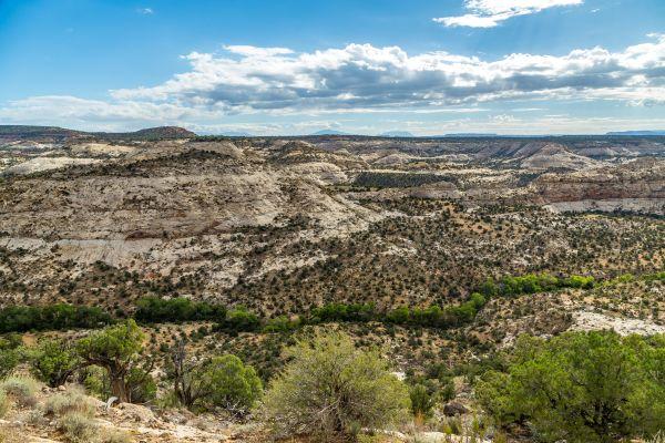 US-Naturschutzgebiete müssen schrumpfen