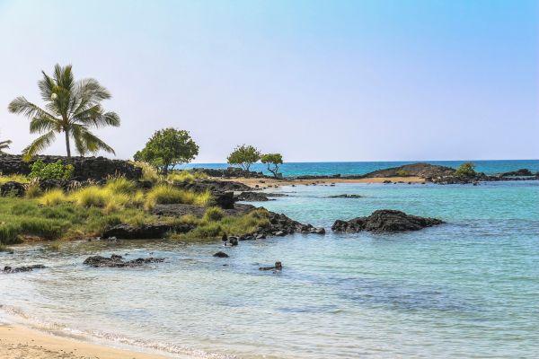 A Hawaï, des habitants s'opposent à la vente d'un ranch