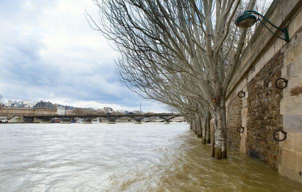 Paris museums on high alert as Seine bursts its banks