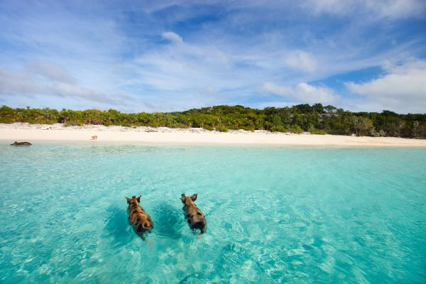 Incredible beaches to discover in 2018