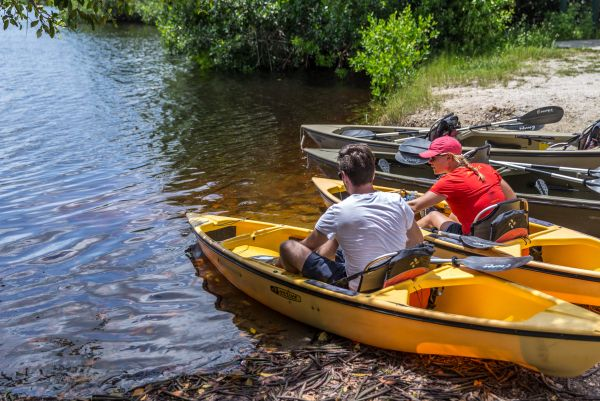 Everglades Nationalpark: ein absolutes Muss für Naturfreunde