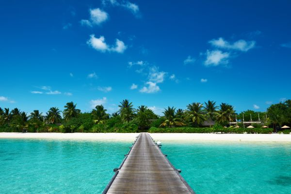Unruhen auf den Malediven: Das Auswärtige Amt rät den Urlaubern die Hauptstadt zu meiden