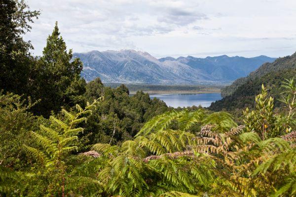 Cile e Tompkins Conservation insieme per creare un parco nazionale grande come la Svizzera