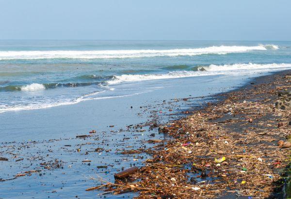 Bali : Plongée au milieu d'une mer de déchets