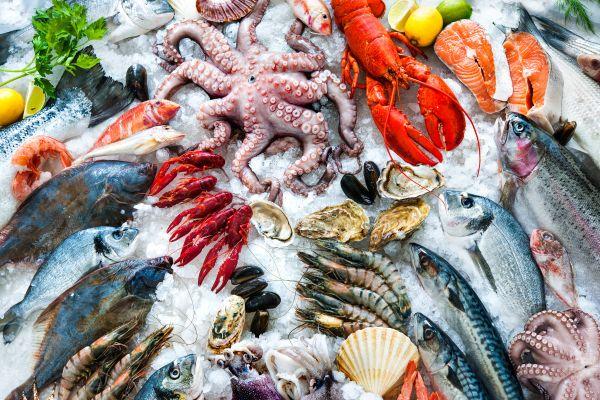 Chine : il pleut des fruits de mer