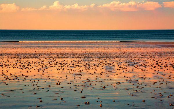 Bretagne : une eau orangée vient perturber les vacanciers !