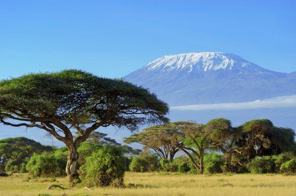 Mit sieben Jahren die jüngste Besteigerin des Kilimandscharos
