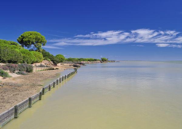 Una visita en detalle al Parque Nacional de Doñana