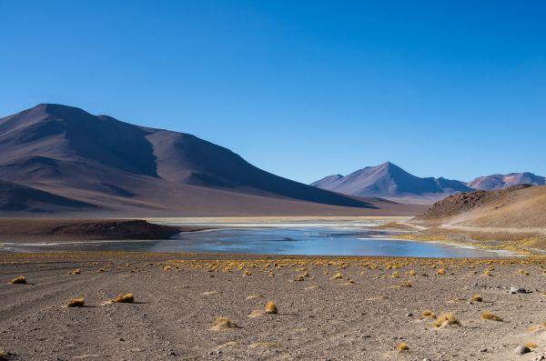Cile: dopo 500 anni di aridità piove nel deserto di Atacama. E non è una buona notizia.