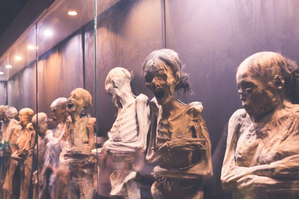Quarante momies de plus de 2 000 ans viennent d'être découvertes en Egypte