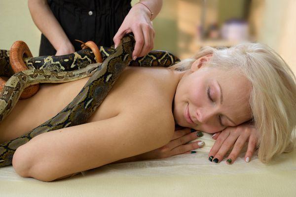 Faites-vous masser par des serpents !