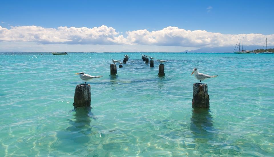 Lagon de Guadeloupe