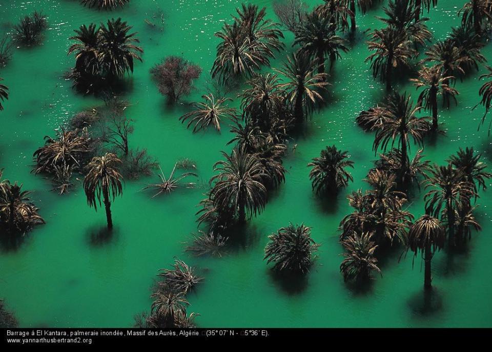 Vid o l 39 alg rie comme vous ne l 39 avez jamais vue for Fond ecran photo yann arthus bertrand