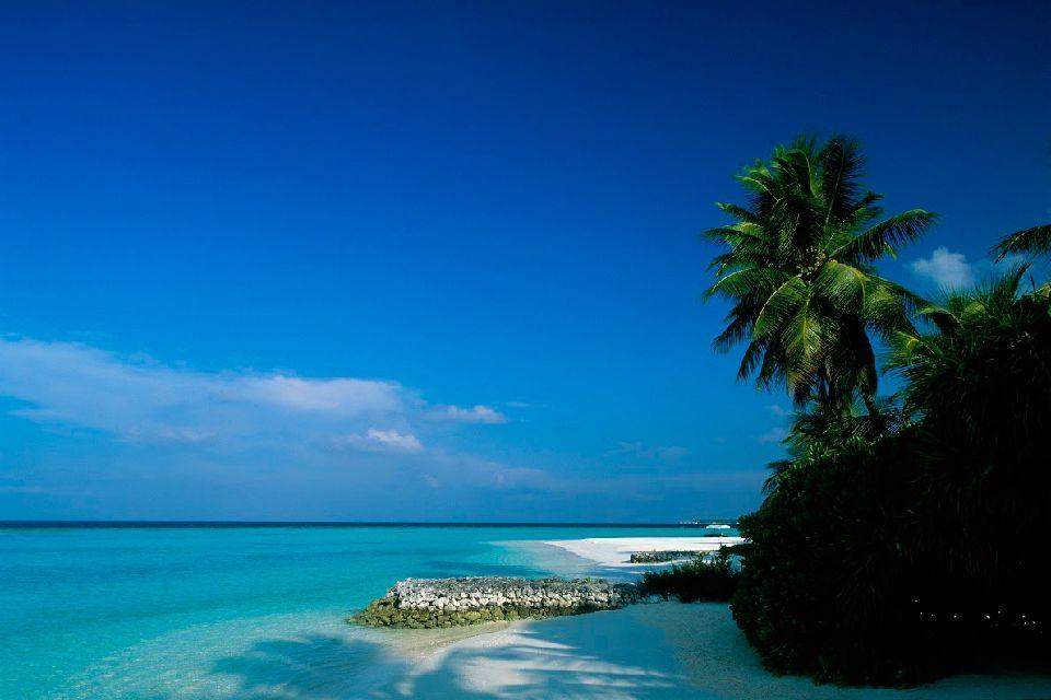 # Les Maldives (Océan Indien)