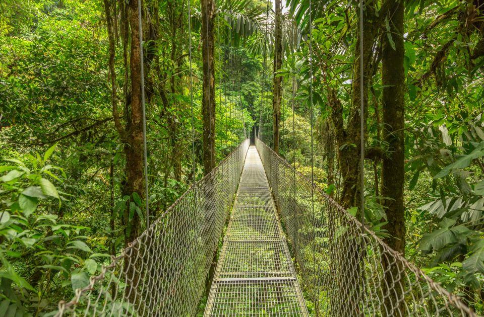 Forêt de nuages, Monteverde, Costa Rica