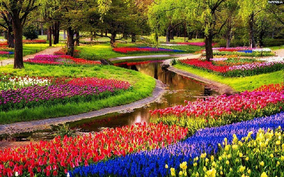 Lisse, Niederlande