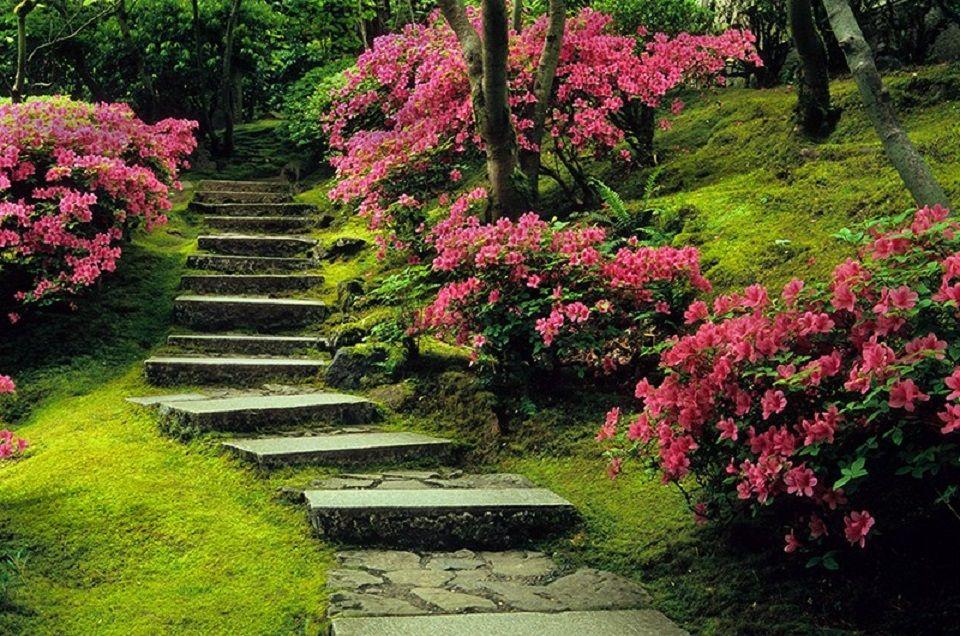 Japanese Garten, Oregon