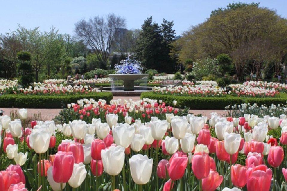 Biltmore Garten, Biltmore Estate