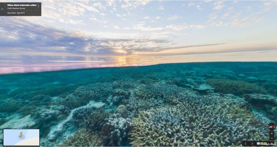 Wilson Island, Great Barrier Reef