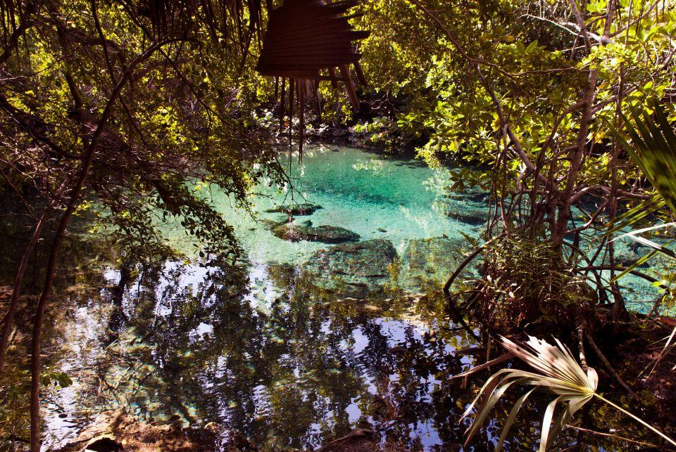 Paradis naturel