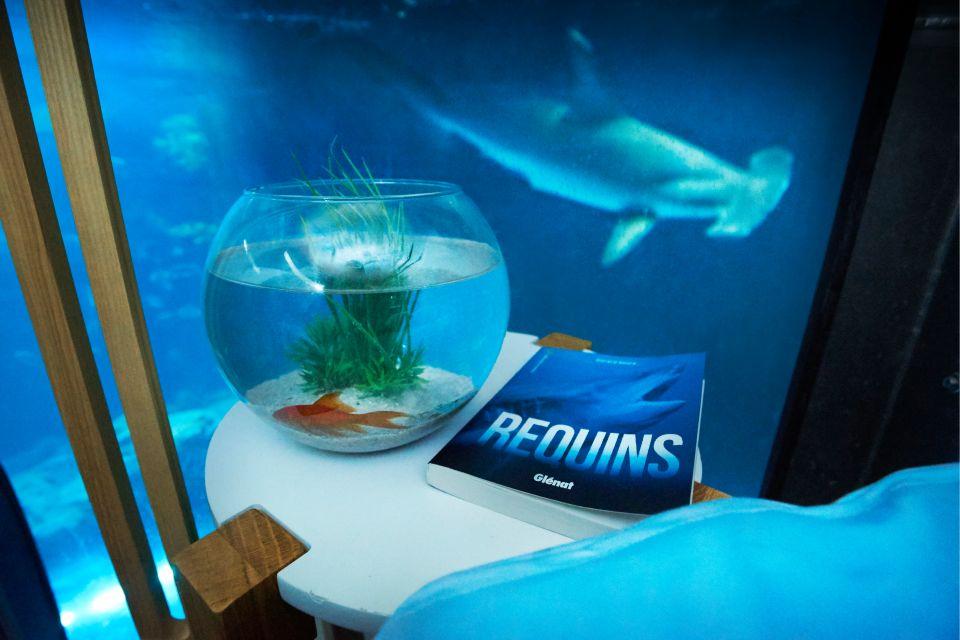 air bnb insolite requin shark