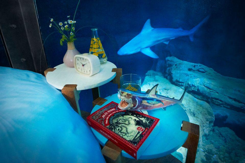 air bnb insolite requin shark room top