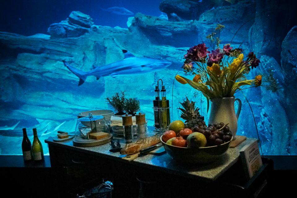 air bnb shark room