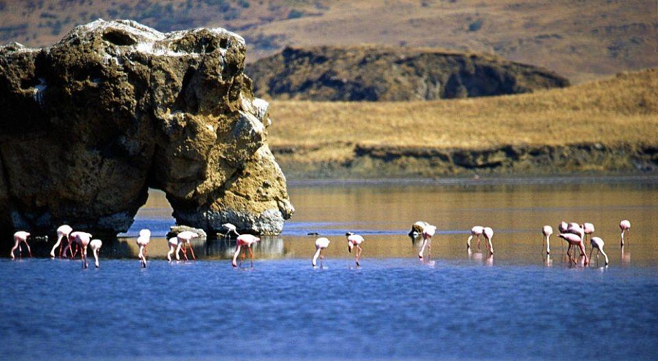 Natronsee, Tansania