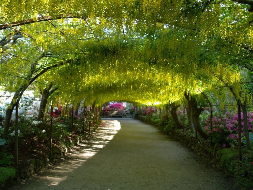des canaries en passant par la guadeloupe d couvrez les plus beaux jardins de la plan te. Black Bedroom Furniture Sets. Home Design Ideas