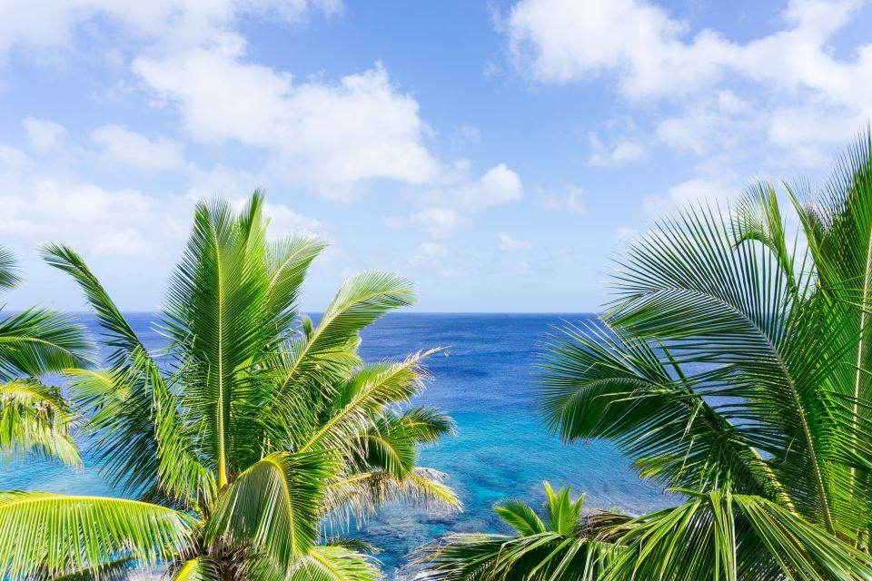 14) Niue