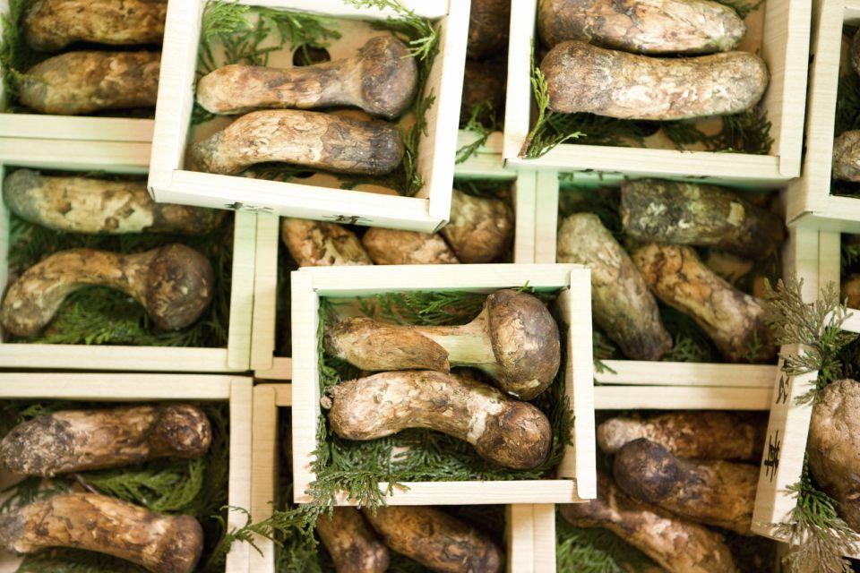 5) Le champignon Matsutake