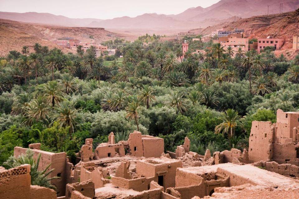 L'oasis de la Gorge de Todgha à Ouarzazate