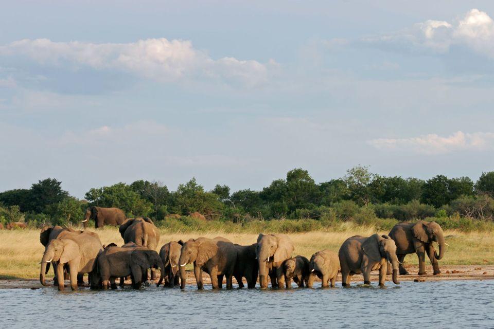 Hwange National Park, Zimbabwe