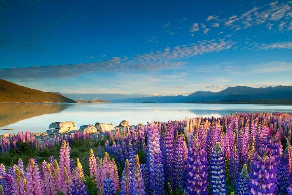 Es fácil disfrutar del mar o de sus bonitos lagos