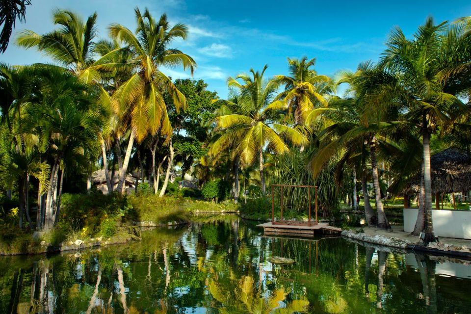 Gogo Tours Punta Cana