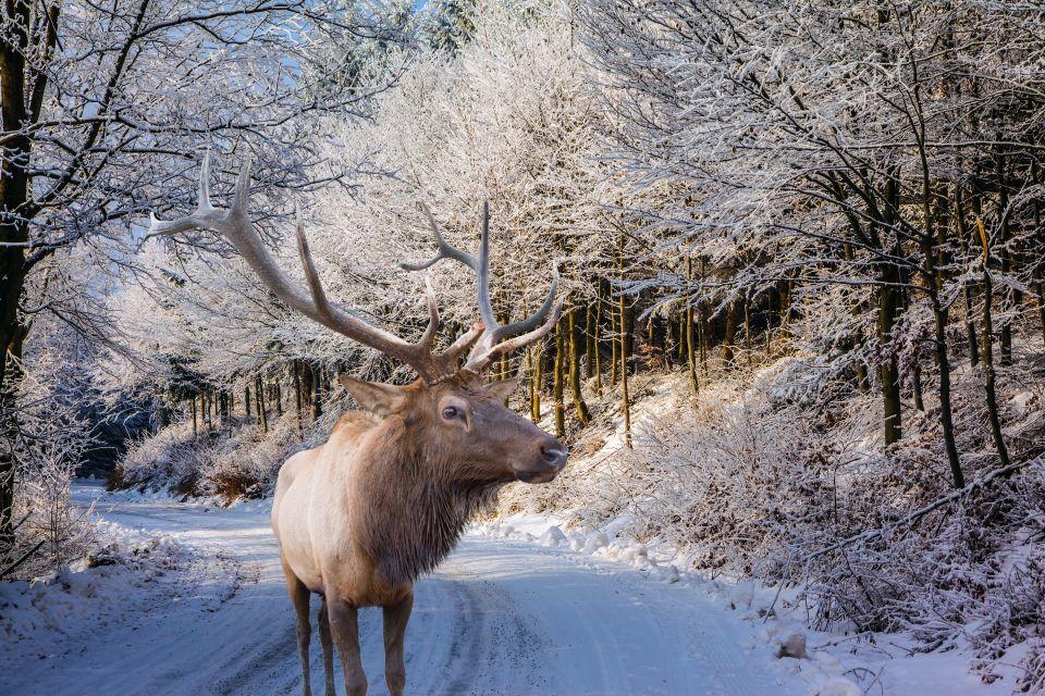 50 Scandinavian sights to see before you die