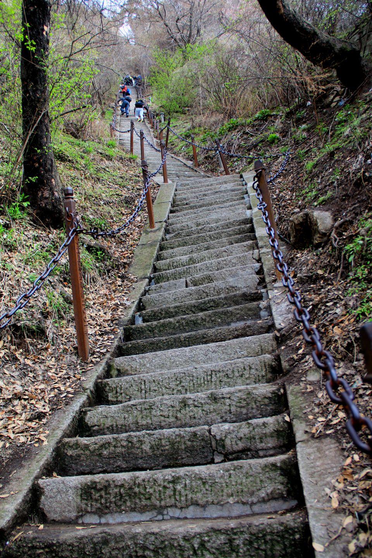 Le sentier commence par un escalier abrupt à flanc de montagne
