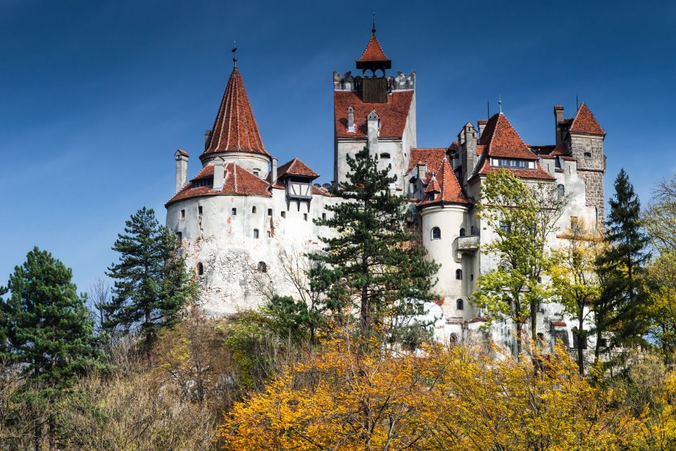 Romania: welcome to Dracula's house