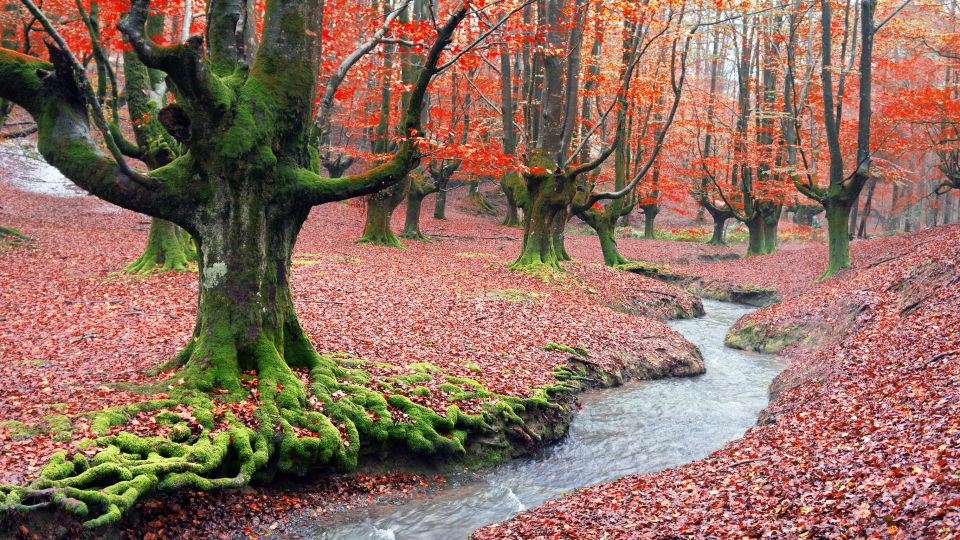 Most Beautiful Places In Spain Nature