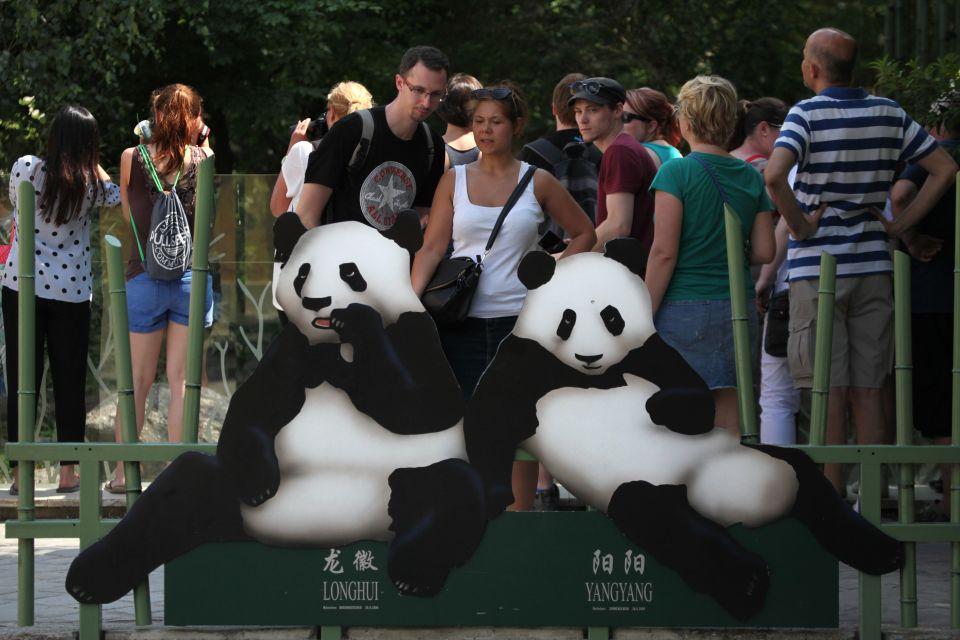 Zoo de Schonbrünn