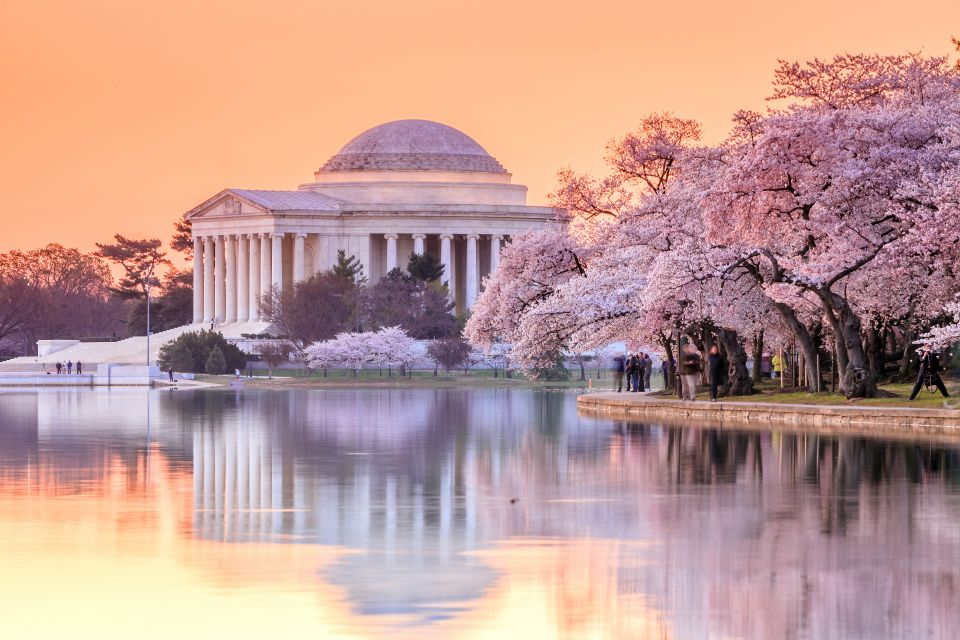 Celebrate the National Cherry Blossom Festival