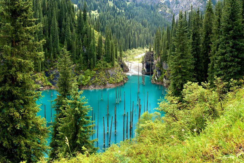 La forêt engloutie du lac Kaindy